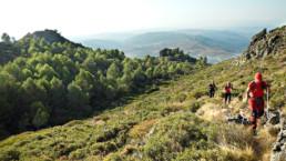 Cansares Parque Natural de los Alcornocales uai